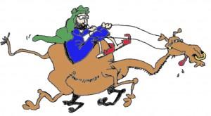 Pablo montando en camello
